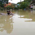 Banjir yang melanda sejumlah rumah di beberapa dusun di Entikong.
