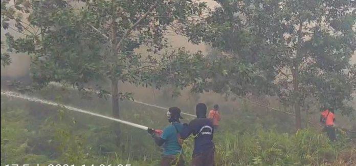 Petugas gabungan saat memadamkan api di kawasan Purnama Kota Pontianak.