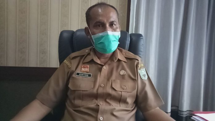 Plt Kepala Dinas Kesehatan Kabupaten Sanggau Ginting