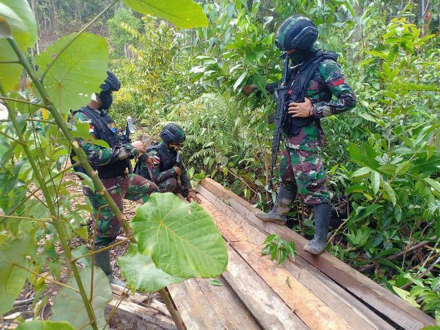 Satgas Pamtas Yonif 407/Padma Kusuma berhasil mengamankan belasan kayu ilegal saat melaksanakan patroli keamanan perbatasan RI - Malaysia.