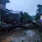 Puting beliung yang menghantam Dusun Bahta Bonti telah menumbangkan pohon dan merusak rumah warga